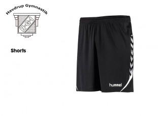 Havdrup Gym shorts  011334-2001